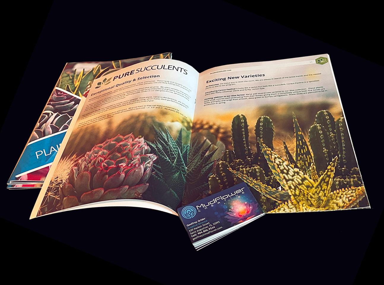 mudflower-creative-graphic-design-saint-augustine-florida-02